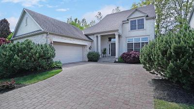 Powell Single Family Home For Sale: 7956 Coldwater Drive