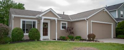 Powell Single Family Home Contingent Finance And Inspect: 1825 Bierstad Drive