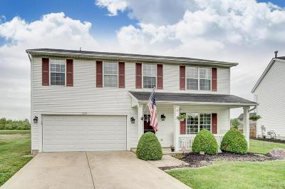 Delaware Single Family Home For Sale: 189 Glengary Drive