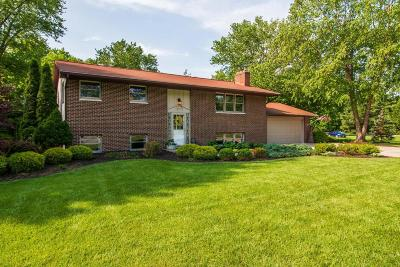 Westerville Single Family Home For Sale: 4840 Parkmoor Drive