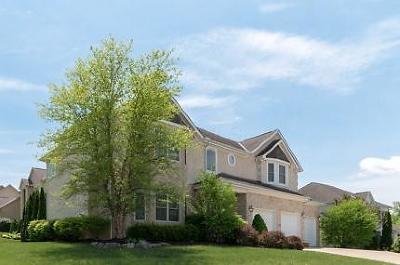Westerville Single Family Home For Sale: 5190 Royal County Down