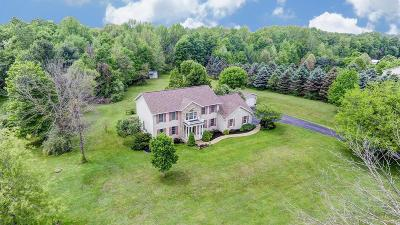 Johnstown Single Family Home Contingent Finance And Inspect: 8255 Sportsman Club Road
