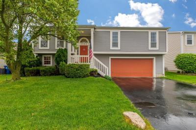 Hilliard Single Family Home Contingent Finance And Inspect: 4985 Cashion Drive