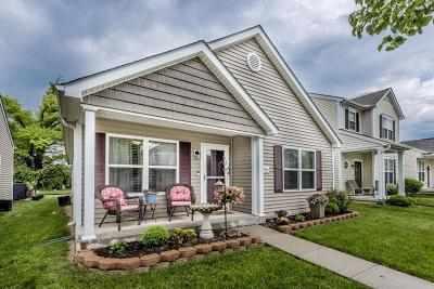 Grove City Single Family Home Contingent Finance And Inspect: 2561 Snowtip Lane