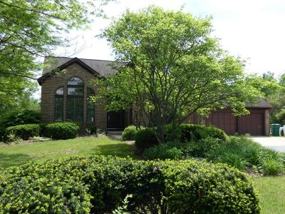 Hilliard Single Family Home Contingent Finance And Inspect: 7275 Roberts Road