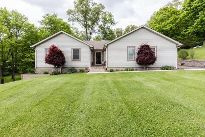 Newark Single Family Home For Sale: 735 Robinhood Drive