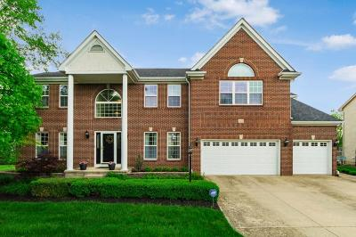 Dublin Single Family Home Contingent Finance And Inspect: 8168 Lombard Way