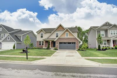 Hilliard Single Family Home For Sale: 3389 Woodland Drive