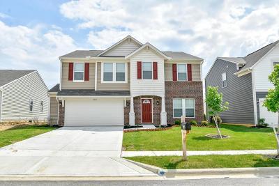 Blacklick Single Family Home For Sale: 8025 Grant Park Avenue