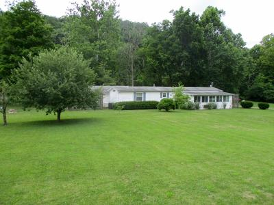 Pike County Single Family Home For Sale: 914 Happy Hollow Road