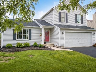 Marysville Single Family Home Contingent Finance And Inspect: 1094 Village Drive