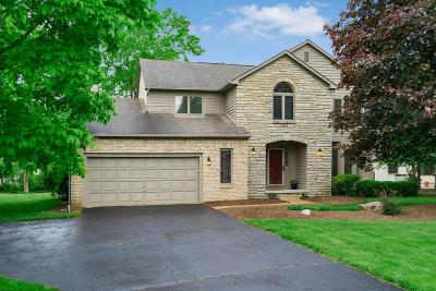 Westerville Single Family Home For Sale: 6106 Sugarmaple Drive