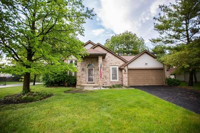 Columbus Single Family Home For Sale: 6312 Youngland Drive