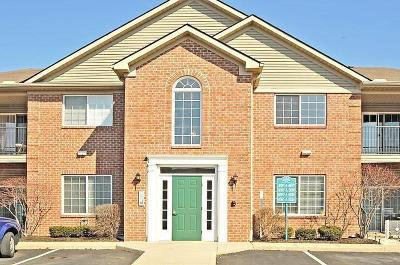 Lewis Center Condo Contingent Finance And Inspect: 8083 Cranes Crossing Drive #S