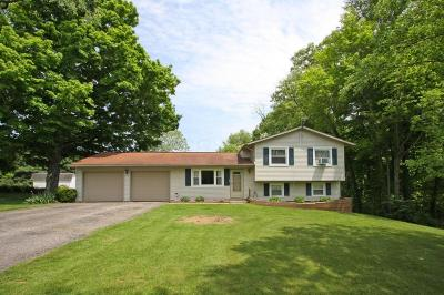 Mount Vernon Single Family Home Contingent Finance And Inspect: 15650 Pleasant View Road
