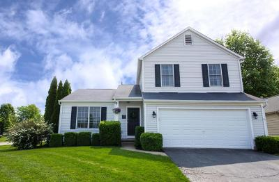 Blacklick Single Family Home For Sale: 404 Old Ivory Court