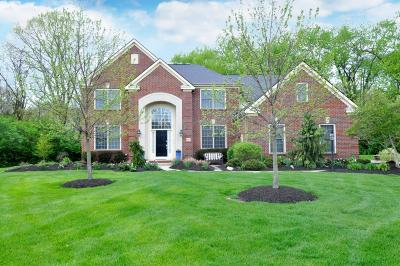 Dublin Single Family Home Contingent Finance And Inspect: 6867 McDougal Court