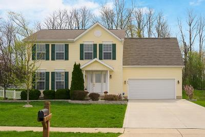 Johnstown Single Family Home Contingent Finance And Inspect: 71 Stone Hedge Row Drive