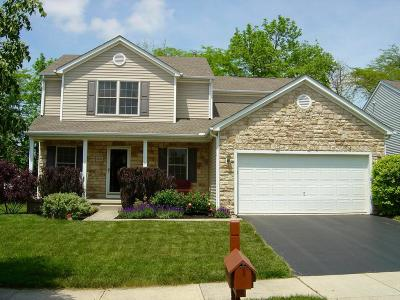 Delaware Single Family Home For Sale: 1013 Sapphire Flame Court