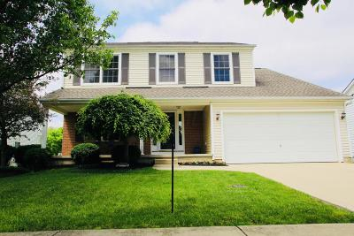 Delaware Single Family Home For Sale: 152 Cheshire Crossing Drive