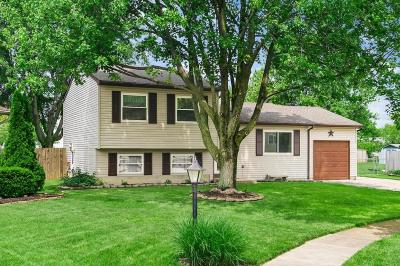 Grove City Single Family Home For Sale: 3841 Redwood Court