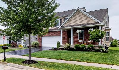 Westerville Single Family Home For Sale: 5988 Shreven Drive