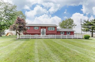 Delaware Single Family Home For Sale: 7981 Us Highway 23 N