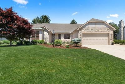 Hilliard Single Family Home For Sale: 3480 Scioto Run Boulevard