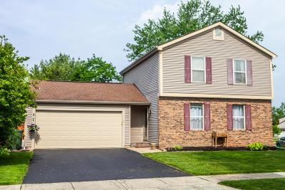 Dublin OH Single Family Home Contingent Finance And Inspect: $199,000