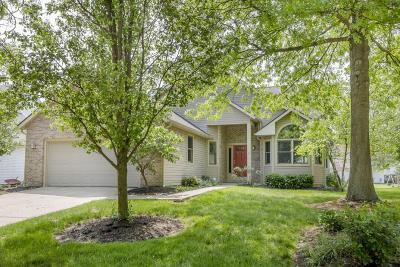 Delaware Single Family Home For Sale: 986 Executive Boulevard