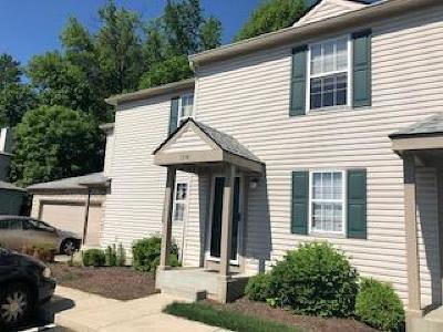 Hilliard Condo For Sale: 1741 Ridgebury Drive #137B