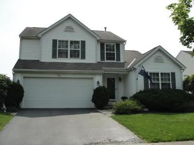 Delaware Single Family Home For Sale: 229 Beech Drive