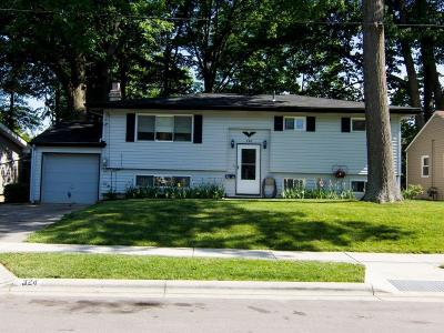 Westerville Single Family Home For Sale: 324 E Park Street