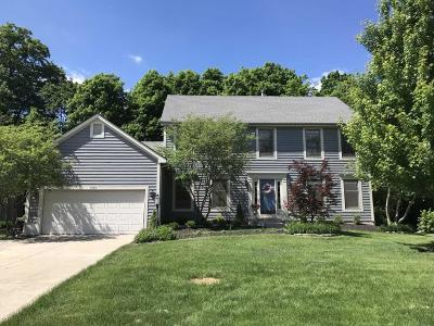 Hilliard Single Family Home For Sale: 4766 Coltview Court