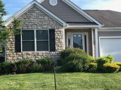 Delaware Single Family Home For Sale: 216 Rockmill Street