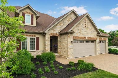 Westerville Condo For Sale: 5262 Slater Ridge