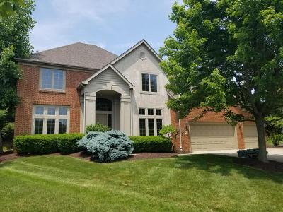 Dublin OH Single Family Home For Sale: $424,900