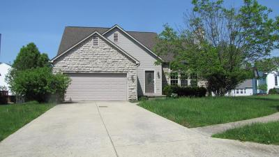 Canal Winchester Single Family Home Contingent Finance And Inspect: 7619 Crist Court