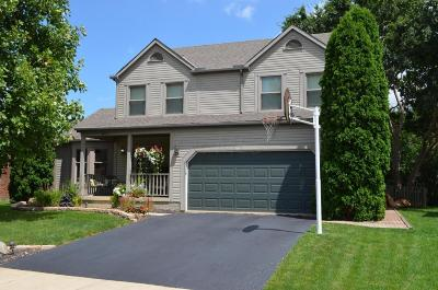 Westerville Single Family Home For Sale: 824 Summertree Lane