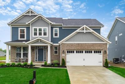 Hilliard Single Family Home For Sale: 3537 Woodland Drive