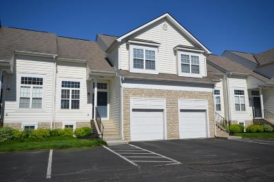 New Albany Condo Contingent Finance And Inspect: 5829 Stallion Drive