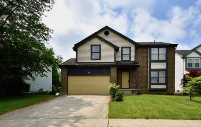 Worthington Single Family Home For Sale: 7401 Oakmeadows Drive