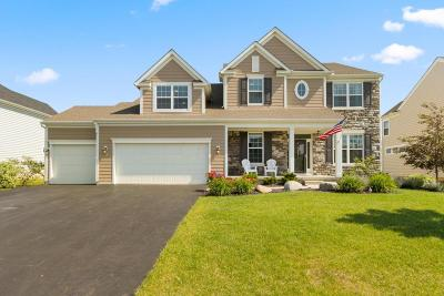 Dublin Single Family Home For Sale: 4072 Wyandotte Woods Boulevard