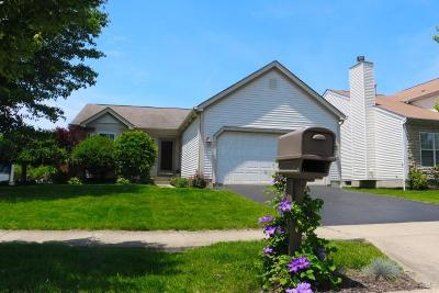 Blacklick Single Family Home Contingent Finance And Inspect: 487 Sandmar Drive