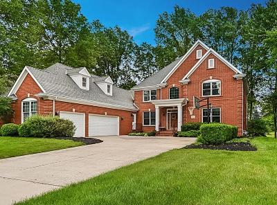 Dublin Single Family Home For Sale: 8456 Tartan Fields Drive