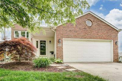 Westerville Single Family Home For Sale: 6825 Breshly Way