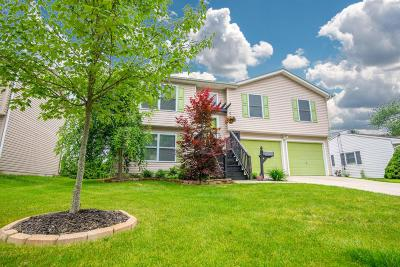 Johnstown Single Family Home Contingent Finance And Inspect: 207 Sunset Drive S