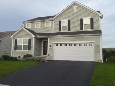 Grove City Single Family Home For Sale: 2346 Boston Mills Drive