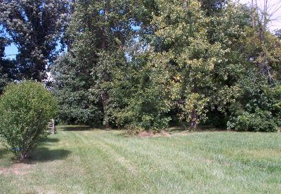 Residential Lots & Land For Sale: 583 Church View Court