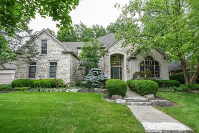 Dublin Single Family Home For Sale: 8484 Tartan Fields Drive